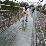 Would You Dare the Glass Bottom Bridge?